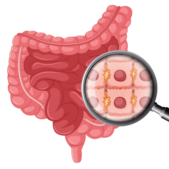 What are colon cleansers?